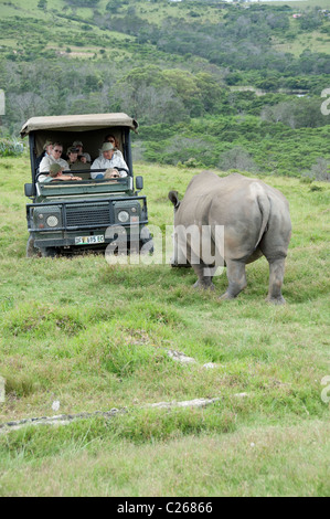 South Africa, Eastern Cape, East London, Inkwenkwezi Private Game Reserve. Stock Photo
