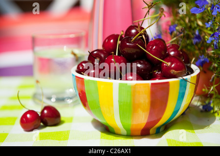 Fresh cherries in the colorful summer garden - Stock Photo