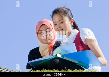 two girls studying together in the field - Stock Photo