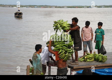 pucallpa guys  cities of pucallpa and tarapoto, but it is iquitos that attracts most interest   despite initial reports that both men had drunk ayahuasca, one of.