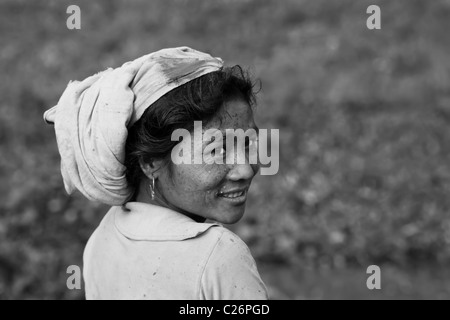 Portrait of a young woman from the Mishing tribe, Majuli Island, Assam, India - Stock Photo