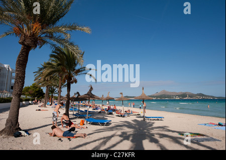 Holidaymakers sunbathing beneath the palm trees on the beach at the beautiful spainish resort of Puerto de Alcudia - Stock Photo