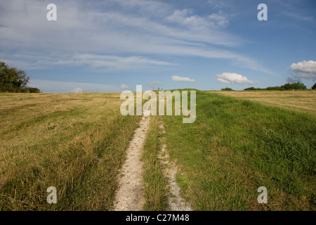 Country Path - Stock Photo