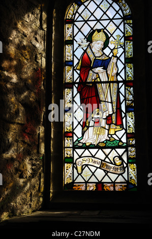 St Nons Chapel Pembrokeshire stained glass window depicting St David the Patron Saint of Wales St Davids Wales Cymru - Stock Photo
