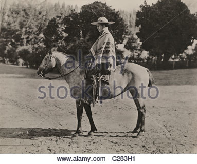 A Chilean rancher sits on his horse in front of the Lombardy Poplars. - Stock Photo