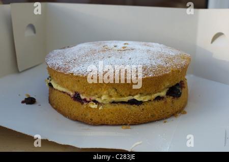 cream sponge cake fresh from oven cooked - Stock Photo