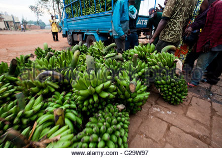 Bananas lie on the ground outside a local market in Kigali, Rwanda. - Stock Photo