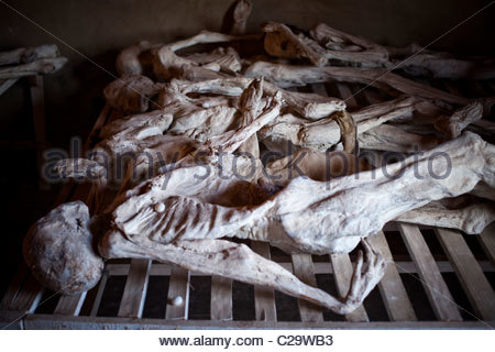 Bodies from the 1994 genocide are on display at a memorial in Rwanda. - Stock Photo