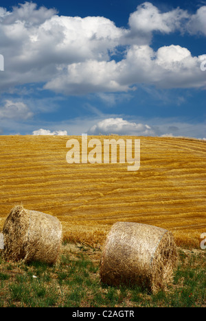 Two straw bales with beautiful golden fields in background and moody sky - Stock Photo