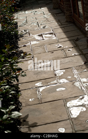 Water on paving slabs following a rain shower. - Stock Photo