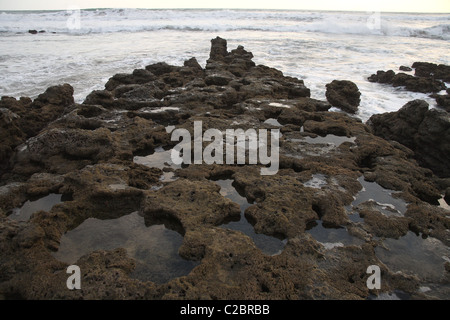 Coral rocks with pools of water on the beach. - Stock Photo