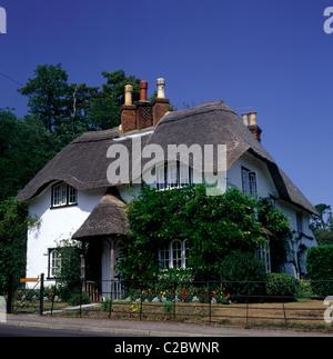Lyndhurst Hampshire England - Stock Photo