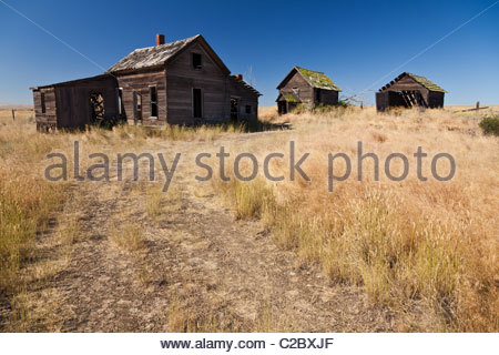 Abandoned farm buildings stand in a row in a field in Oregon. - Stock Photo