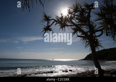 Noosa Beach Queensland Australia - Stock Photo