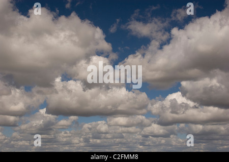 summer sky high cloud low cumulus high stratus blue white horizon day light sun sunny fluffy back drop - Stock Photo