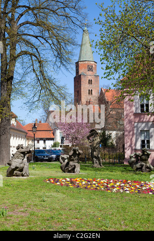 Dom St Peter and Paul from St Petri, Brandenburg an der Havel, Germany - Stock Photo