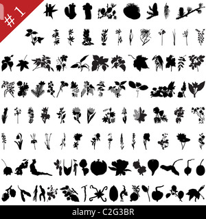Vector collection of different plants and flowers silhouettes #1 - Stock Photo