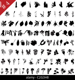 Vector collection of different plants and flowers silhouettes #4 - Stock Photo