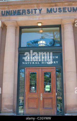 Harvard Museum of Natural History Cambridge MA - Stock Photo