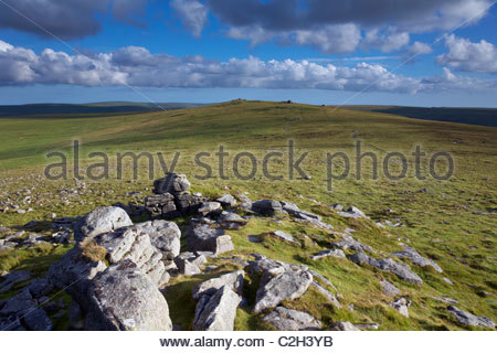 View to High Willhays (621m) from Yes Tor (619m) highest points in southern england, Dartmoor National Park, Devon, - Stock Photo