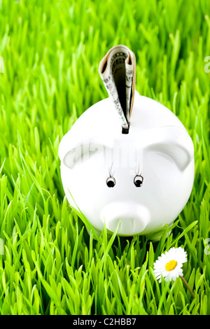 Piggy bank on grass with money - Stock Photo