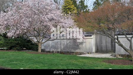 Wooden Gate In Shofuso Japanese House And Garden, Fairmount Park,  Philadelphia, Pennsylvania,