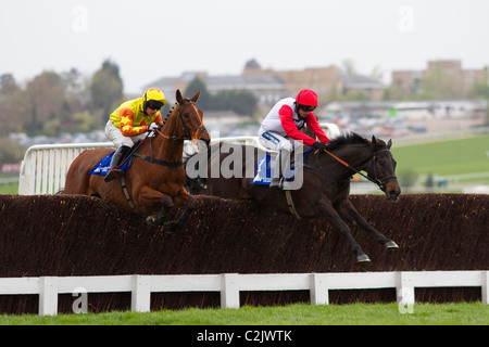 Poquelin in the Masterson Holdings Silver Trophy Chase (Grade 2 Limited Handicap) - 13/4/2011 - Stock Photo