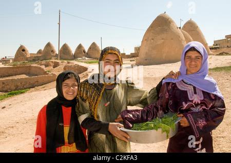 Syria desert Badiyat al Sham farm sheep culture Bedouin ...