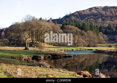 Elter Water, The Lake District, Cumbria, England, UK. - Stock Photo