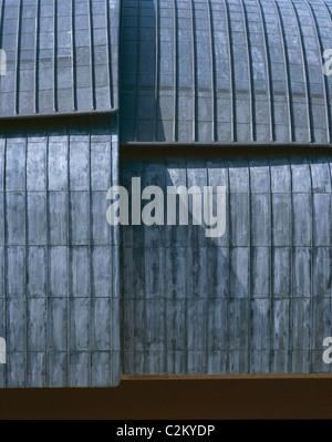 Auditorium, Parco della Musica, Rome, 1997-2002. Detail of roof. Stock Photo