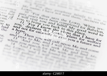 The New American Standard Bible Open To Jeremiah 29:11 - Stock Photo