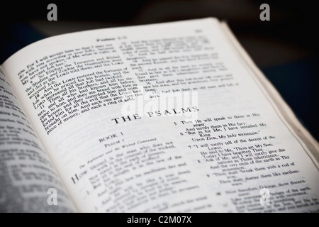 The New American Standard Bible Open To The Psalms - Stock Photo