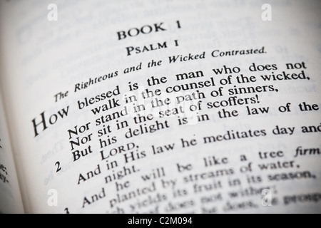 The New American Standard Bible Open To Psalm One - Stock Photo