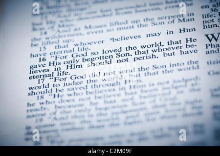 The New American Standard Bible Open To John 3:16 - Stock Photo