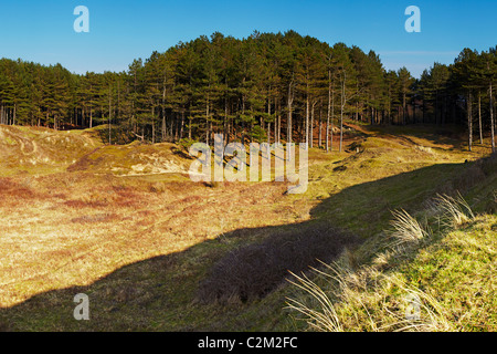 Whiteford Burrows, Gower, Wales - Stock Photo