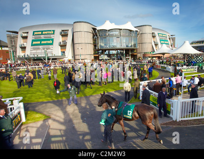 Racehorse enters the parade ring at Aintree Race Course on Grand National Day in Liverpool - Stock Photo