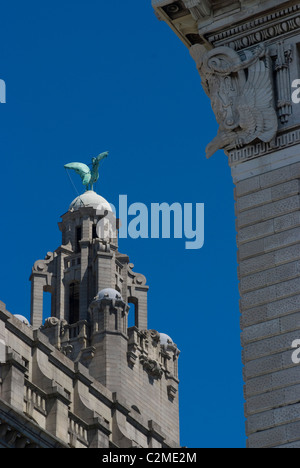 Detail of the Liver Building, Liverpool, Merseyside, England - Stock Photo