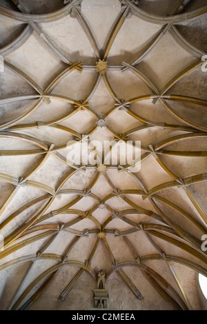 Ceiling detail inside Vladislav Hall, Prague Castle, built by Benedikt Rie. - Stock Photo