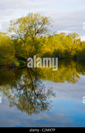 First thing on a spring morning and the surrounding countryside reflecting on the River Clyde in Barons Haugh Nature - Stock Photo