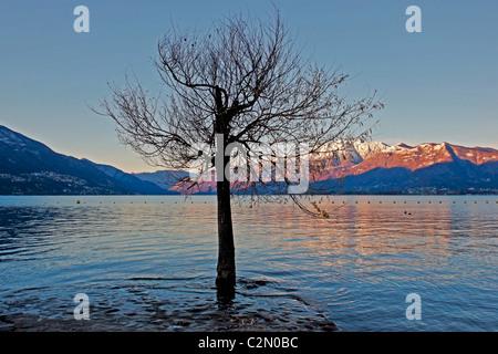 Lake Maggiore in the morning - Stock Photo