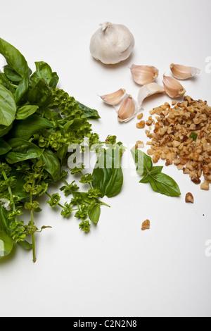 Basil Garlic and Walnuts Ingredients for making pesto - Stock Photo