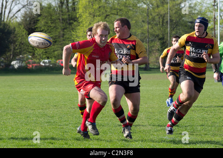 Richmond Rugby Football Club in action - Stock Photo