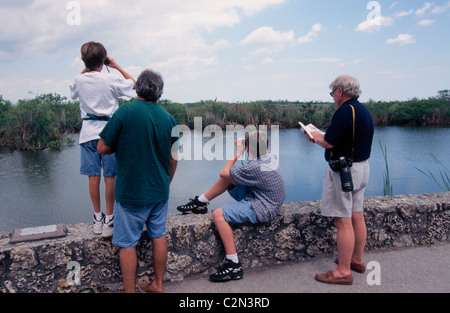 Bird-watching is a favorite activity of visitors to Everglades National Park, a vast wetlands wilderness known as - Stock Photo