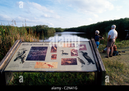 Illustrated signs identify birds and other wildlife for visitors to Everglades National Park, a vast wetlands wilderness - Stock Photo