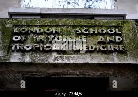 Moss covered Sign craved in stone for the London school of hygiene and tropical medicine. - Stock Photo
