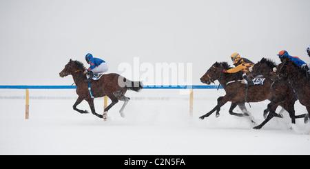 Horse Racing on frozen lake 'White Turf 2011' at St Moritz, Switzerland - Stock Photo