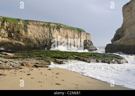 A photographer shooting at Shark Fin Cove located on the rugged coastline of Santa Cruz, California. - Stock Photo