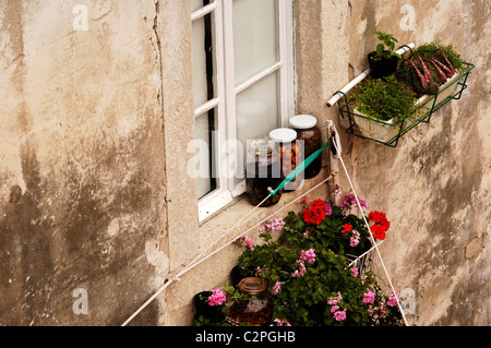 Jars of fruit with geranium and herb window boxes on a residential property, Dubrovnik, Croatia. - Stock Photo