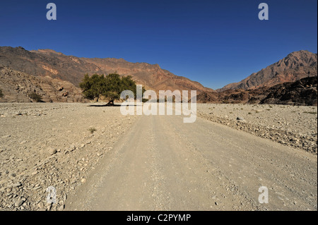 Oman, Wadi Bani Awf, rocky mountains with trees and road in Arabian Peninsula