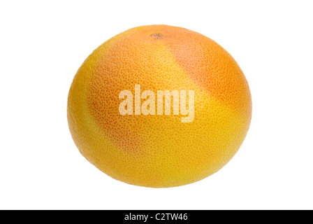 Grapefruit 15 - Stock Photo